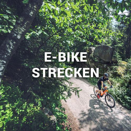 E-Bike Strecken im Wald
