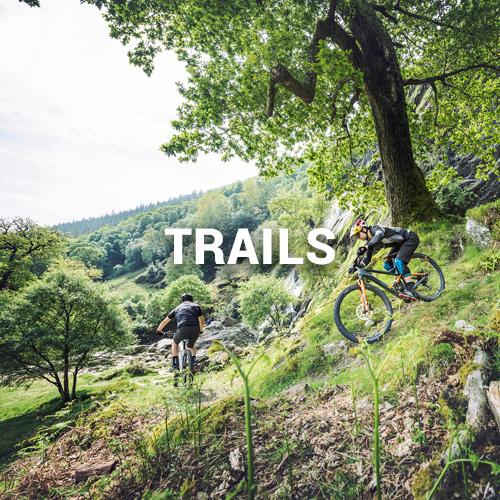Trails im wald mit Mountainbike
